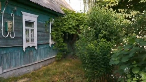 Брянская обл, Выгоничский р-н, деревня Бурачовка